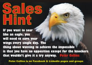sales-hint-soar-like-an-eagle